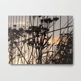 Rust #2 Metal Print