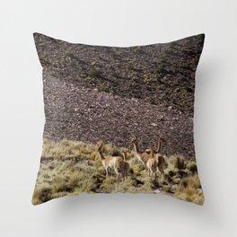 Wild Alpacas Throw Pillow