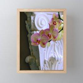 An Order Of Corinthian For Here Framed Mini Art Print