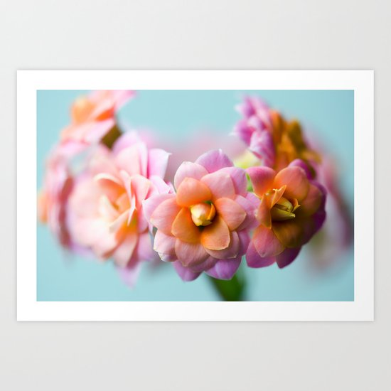 FLOWERS MACRO NATURE 2 Art Print