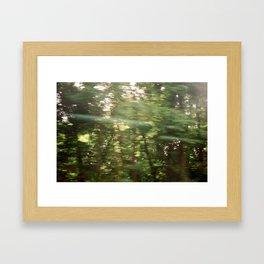 Moving Trees  Framed Art Print