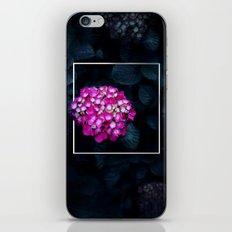 Boastful Vanity iPhone & iPod Skin
