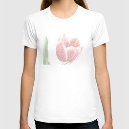 Tulip red and white, pen drawing T-shirt