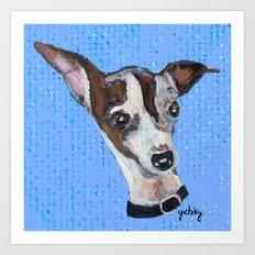 Mia the Italian Greyhound Art Print