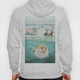 Arctic Expedition Hoody