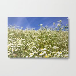 Flower Photography by Roman Synkevych Metal Print