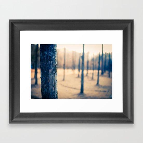 Nami Island Forest Framed Art Print