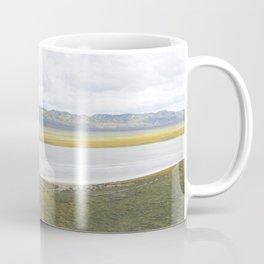 Carrizo Plain Mega Bloom, Central California Coffee Mug