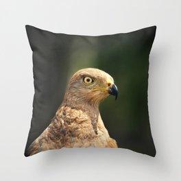 Savanna hawk  Throw Pillow