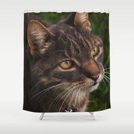 Cat by Giada Ciotola Shower Curtain