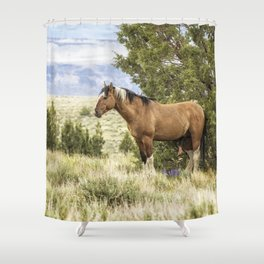 Stallion Relaxing on So Steens Mountain Shower Curtain