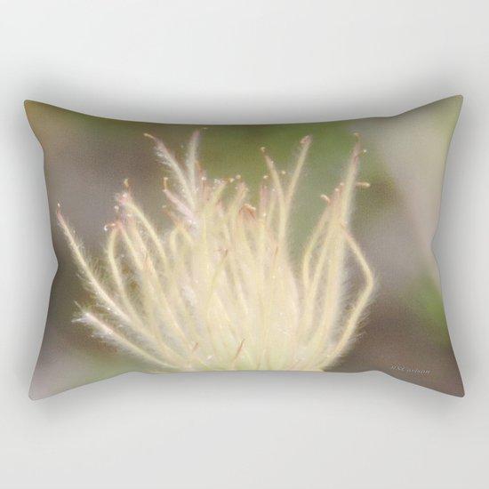 Apache Plume Rectangular Pillow