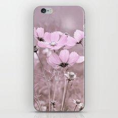 Cosmea 157 iPhone & iPod Skin