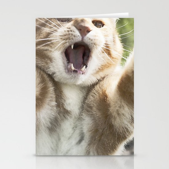 Attack Cat Stationery Cards