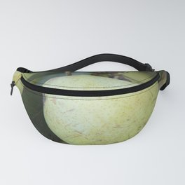 Fresh Picked Pears at Farmers Market Fanny Pack