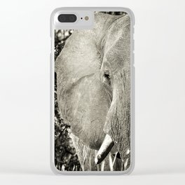 Hidden Clear iPhone Case