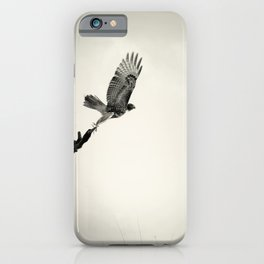 Red-Tail Hawk on Columbia River, Washington, Bird, Wildlife iPhone Case