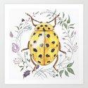 Yellow Beetle  by kimlandman