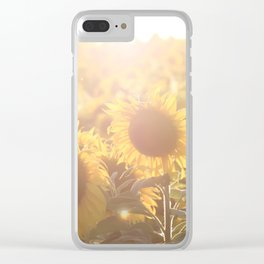 Sunflower Field Sunset Clear iPhone Case