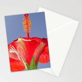 Tropical Red Hibiscus Flower Against Blue Sky Stationery Cards