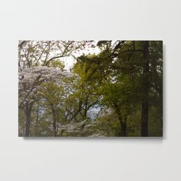 Woodland Green Metal Print