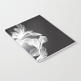 Petal Mesh I Notebook