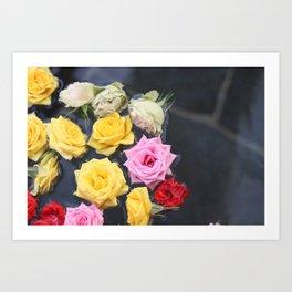 Floating onsen roses Art Print