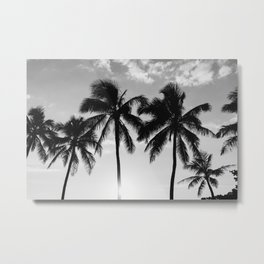 Hawaiian Palms II Metal Print