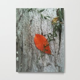Leaf On Fire Metal Print