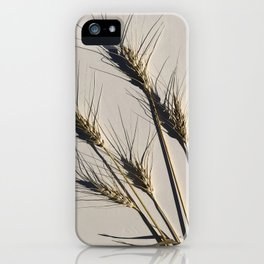 prairie wheat iPhone Case