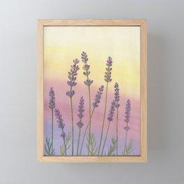 Lavender in Sunset Framed Mini Art Print