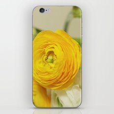 You are my flower iPhone & iPod Skin