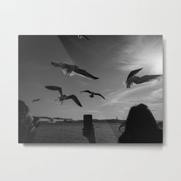 lisbon seagulls Metal Print