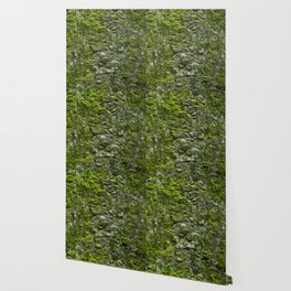Green wall Wallpaper
