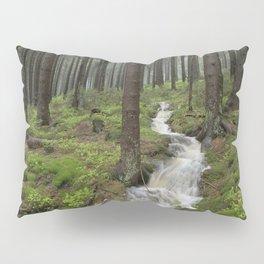 Water always flows downhill Pillow Sham