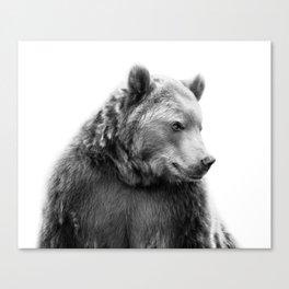 Bear Portrait Canvas Print