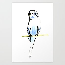 Blue and Yellow Pet Budgie Print Art Print