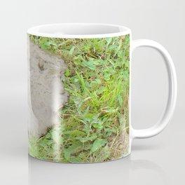 Watercolor Poop 07, Bear, Cape Breton, Nova Scotia, Canada, Sad and Flat Coffee Mug