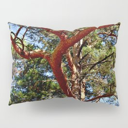 Autumnal lure of the forest Pillow Sham