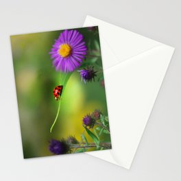 Ladybug In Search Stationery Cards