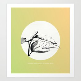 [5.21—5.25] Silkworms Awaken and Eat the Mulberry Leaves Art Print