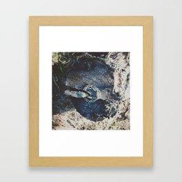 Pine branch circle Framed Art Print