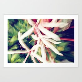 ABSTRACT LILY Art Print