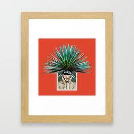 Lady of Thorns Framed Art Print