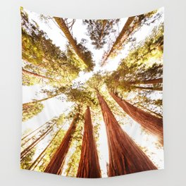 sequoia tree Wall Tapestry