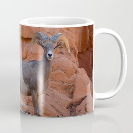 Desert Bighorn - Valley of Fire Coffee Mug