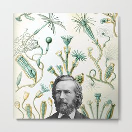 Ode to Haeckel Metal Print