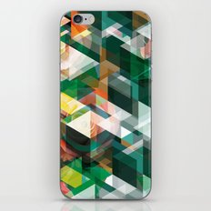 Roses and Triangles iPhone & iPod Skin