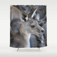 kangaroo Shower Curtains featuring The Kangaroo by Deborah Janke