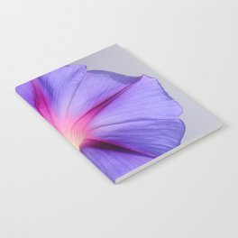 Close Up of A Morning Glory Purple and Pink Flower Notebook